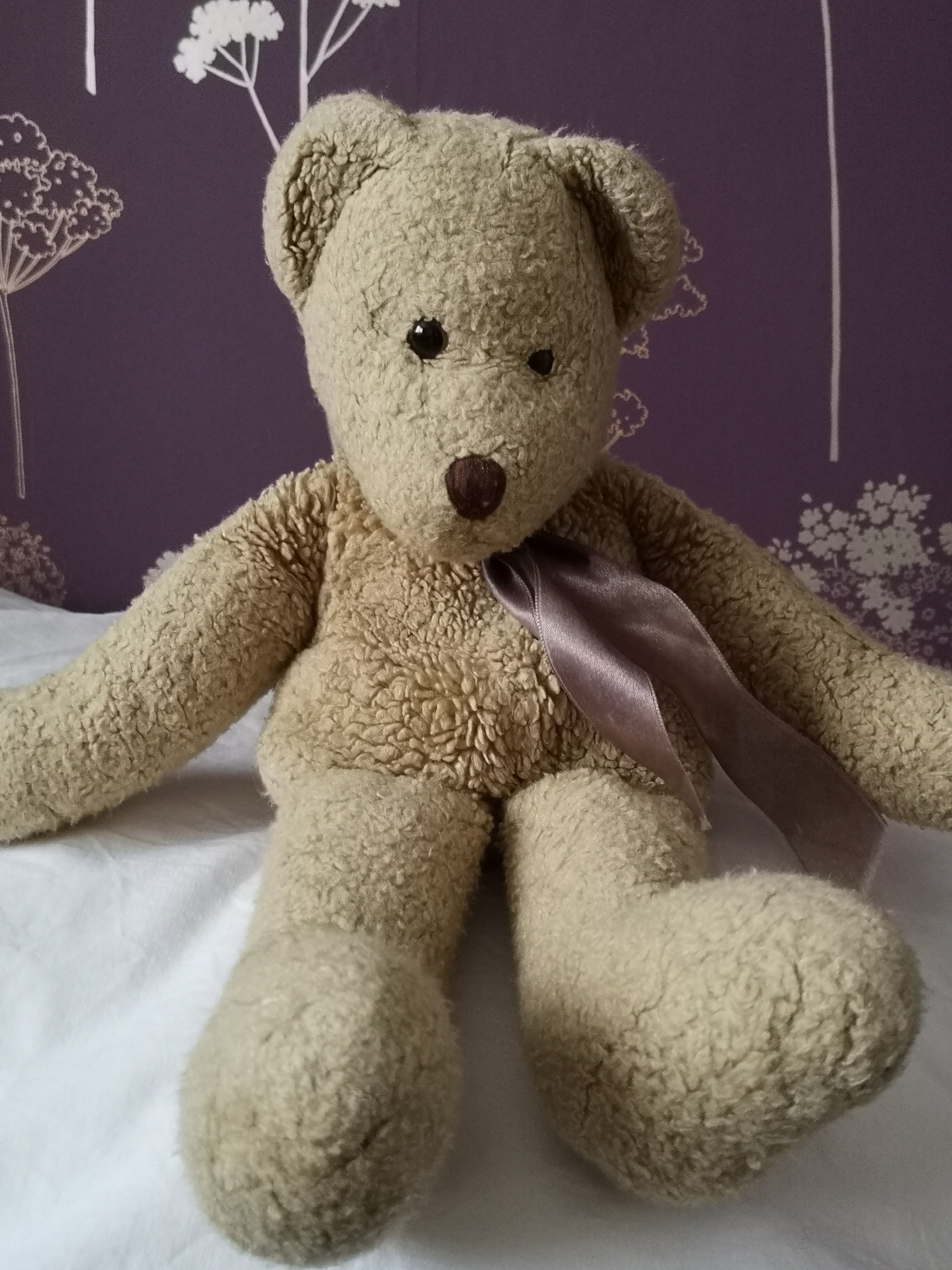 Photo of American Ted